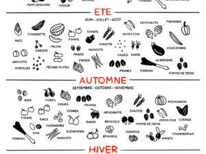 Affiche - Fruits et légumes de saison - Produit
