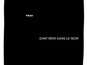 Lot de chat noir - Illustration 03