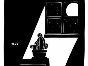 Lot de chat noir - Illustration 02