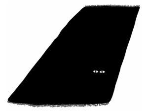 Lot de chat noir - Illustration 01